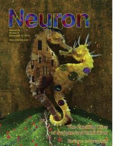 Neuron 79 (6)